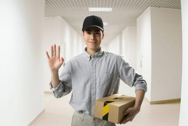 D819 Doorbell Delivery Man
